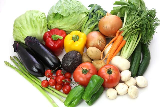 いろいろな野菜1